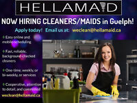 Looking for Professional Cleaners (Guelph)