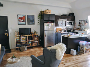 Lovely Downtown Apartment. 2 Bedroom. May 1st