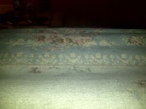 Clean/Thick. Area rug. Size 7.5 wide x 11.5 long. Hard to take p