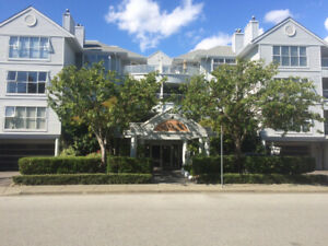1bedroom Richmond FULLY Furnished! Top fl/Luxury/corner/Mtn View