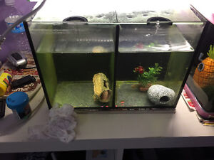 Duo fish tank for sale