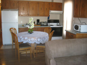 3-1/2 (1 bedroom): short and long term rental (from 1 april)