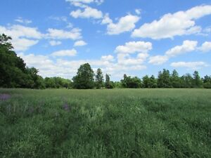 REDUCED TO $305K. WORKING FARM FOR SALE! 315 Abrams Road