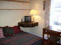Clean, Quiet Rooms in a Heritage Home Downtown $45 nightly