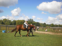 Horse Riding for kids 4+ yrs old