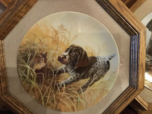 Framed Collector Dog Plates for Sale S/N Limited Edition