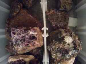 Purple fluorite .tremolite and apatite specimens from norther o  Stratford Kitchener Area image 1