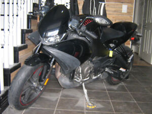Reduced Price 2009 Buell 1125CR Low Miles - $5500 (Maple Ridge)