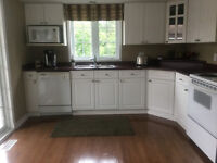 Kitchen cabinets, counter top