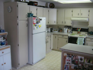 Get A Great Deal On A Cabinet Or Counter In Vernon Home Renovation