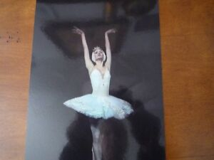 Le Lac des cynges ballet. Ballet The Swan lake