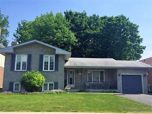 3+1 four level side split available now - great neighborhood!