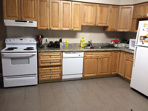 MAY-AUG SUBLET- 203 Lester St (2 MINUTE WALK TO LAURIER) Kitchener / Waterloo Kitchener Area image 3