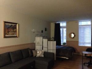 1 mois gratuit – Appartement style loft – Saint-Roch
