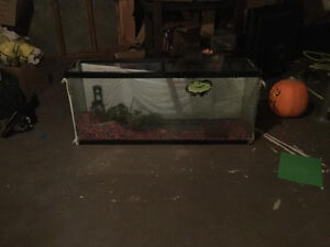 55 gallons fish tank for sale