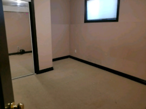 Room available in silverberry