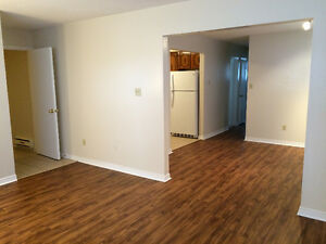 Large renovated 3 bedroom lower level duplex apartment