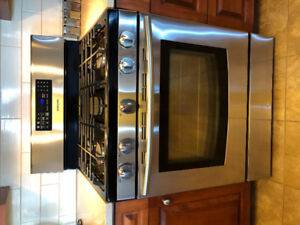 Samsung Gas Convection Stainless Steel Oven/Allure range hood