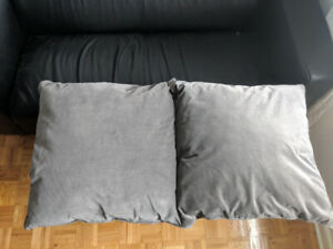 2 Large Grey Velvet Pillows (55cm x 55cm)