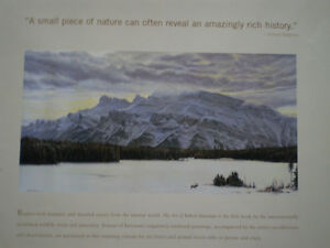 The Art of Robert Bateman Kitchener / Waterloo Kitchener Area image 9