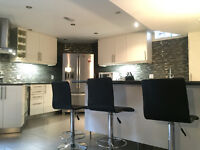 Richmond Hill Basement for Rent, Newly Renovated / New Appliance
