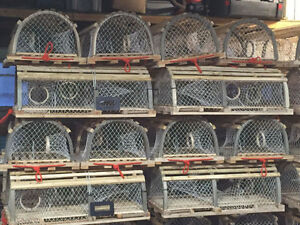 TAKING ORDERS FOR PEI LOBSTER TRAPS