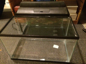 aquarium and everything you need for fish