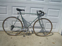 Vintage TALISMAN SPECIAL EDITION 12 speed road bike
