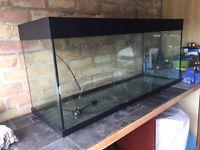 Juwel 4' fish tank