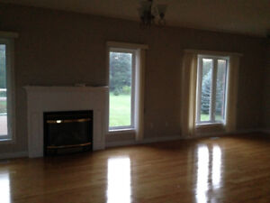 NEW FIREPLACE AND MANTLE F0r SALE, home renovation sale!