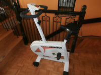 one stationary bike voyageur EX500 $50 two step masters $35 each