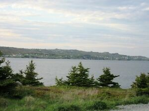 LAND at Mad Rock - Bay Roberts, NL - MLS# 1131965 St. John's Newfoundland image 2