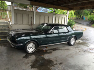 Looking to BUY/TRADE FOR a 1967-69 mustang