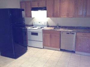 1 bedroom basement suite  with large kitchen