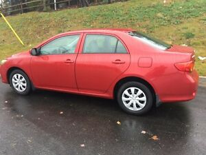 Automatic 2010 Corolla: Mint: Extra Set of Winter Tires