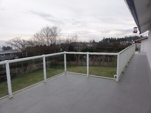 Home Hardware Regal Glass and Aluminum Deck Railing for Sale