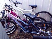 3x bikes $25 each Singleton Singleton Area Preview
