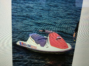 Great starter Sea Doo / for the kids or adult