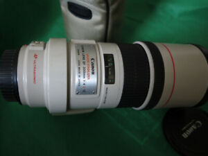 canon EF 300mmF4 L IS fast wildlife lens