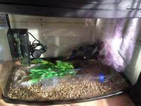 Fish tank full set-up 64 Litre