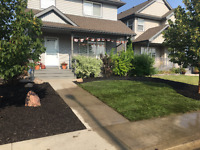 Micro Digger Bobcat Services/Full yard Landscaping/Gardenscape