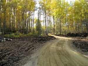 4.99 ACRES OUT OF SUBDIVISION!!!!