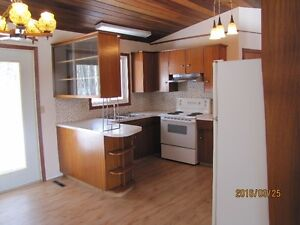 Year Round house for sale at Skeleton Lake- Realtors Welcome Strathcona County Edmonton Area image 5