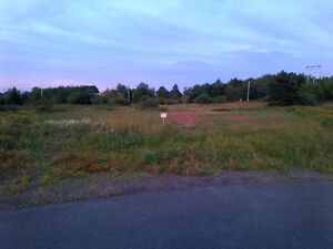 Reduced from 35,900 to 30,000 Lot of Land Amherst