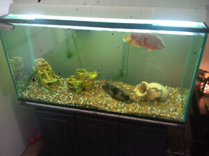 """90 Gallon Fish Tank with 3 Drawer Stand and Twin T8 48"""" Light"""