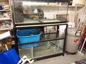 75 gal. saltwater setup