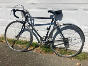Nishiki Road Bicycle (FULLY SERVICED)