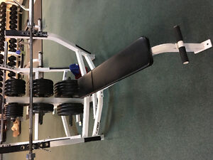 Cyber Incline and flat bench press units and weight tree