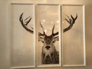 Triptych Stag  photograph art