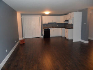 Lower level duplex for rent ALL INCLUDED